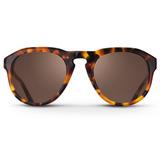 Havana Damien from SS16 in Sunglasses